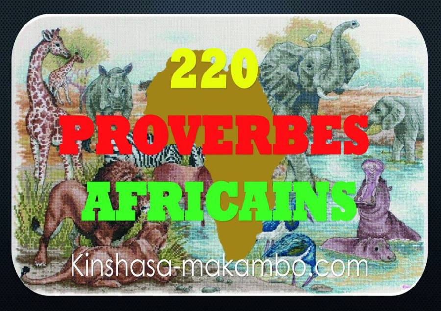 220 PROVERBES AFRICAINS.